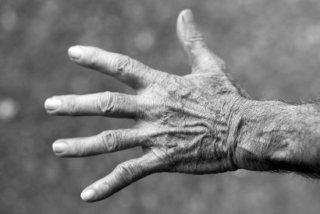 Canva-grayscale-photo-of-left-human-hand-MADGyITrdlI